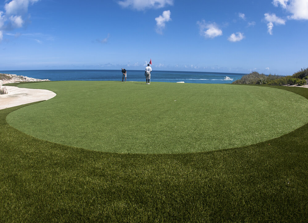 Xgrass Synthetic Grass For Backyard Golf Greens